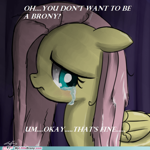 art best of week crying fluttershy i swear im-brony thats-fine - 5581568512