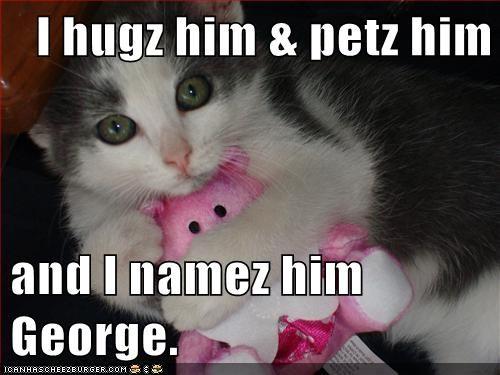Cheezburger Image 5581853184