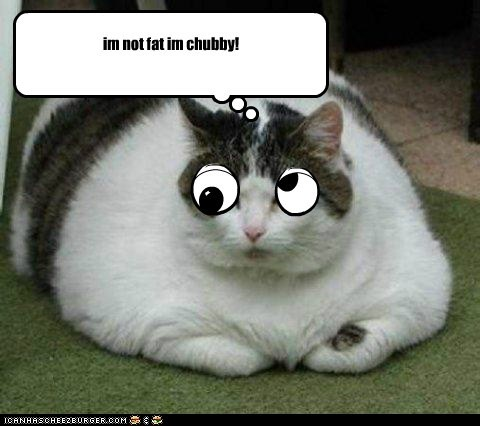 Cheezburger Image 5582099200