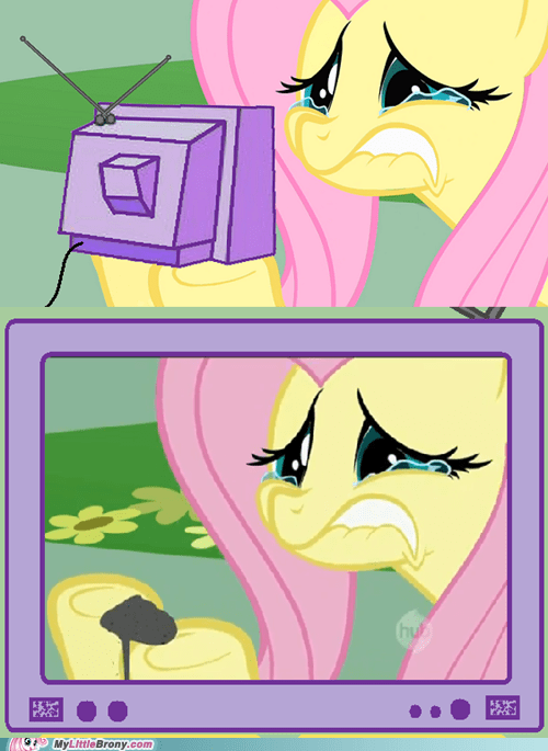 cry fluttershy Inception meme - 5582861056