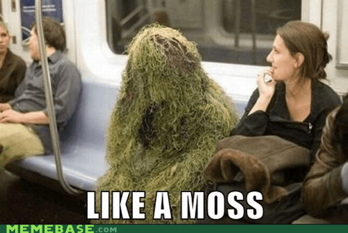 Like a Boss,moss,Subway