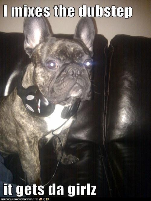 beats dubstep flirt french bulldogs headphones Music - 5583460096