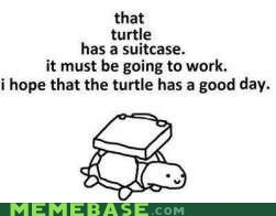 good day,Memes,suitcase,turtle,what,work