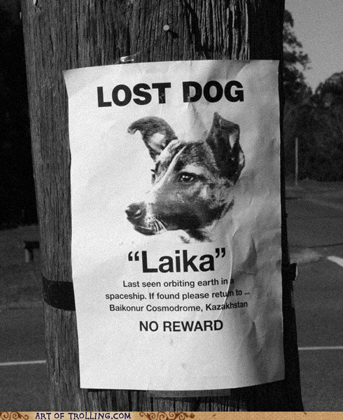 In Soviet Russia, 'lost dog' posters look like this