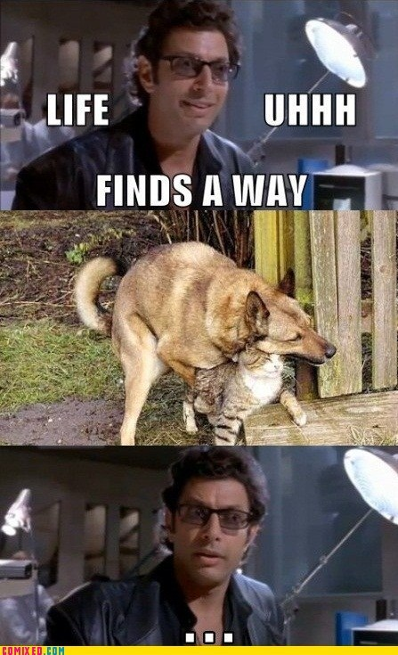 animals From the Movies jeff goldblum life finds a way uhhhh - 5584694784