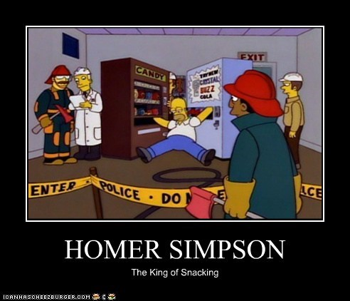 HOMER SIMPSON The King of Snacking