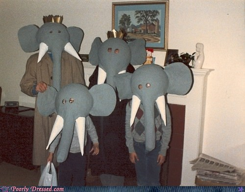 elephants family photos nightmares - 5585235456