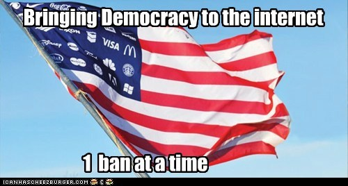 Bringing Democracy to the internet 1 ban at a time