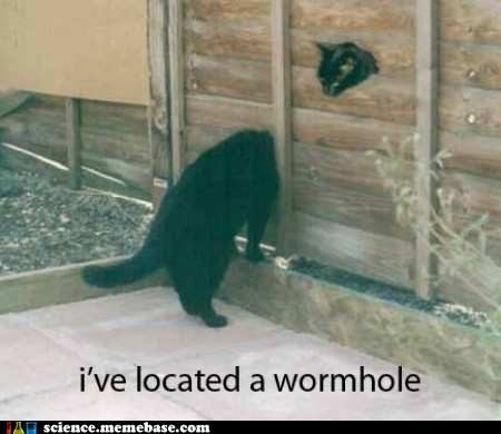 Cats fence Fringe Science time worm hole wtf - 5585999872