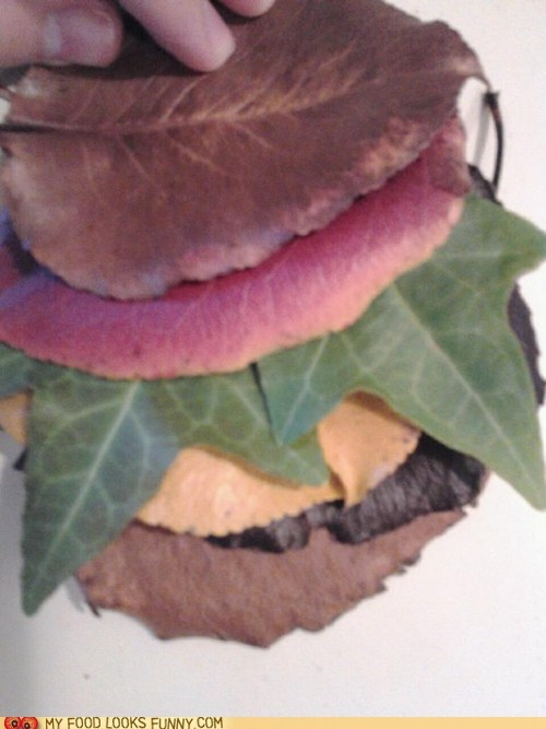 autumn burger colorful creative fall leaves