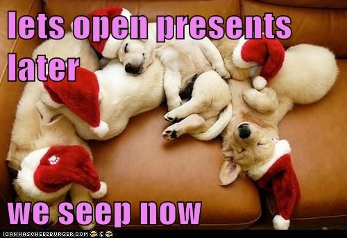 asleep,christmas,christmas present,christmas presents,labrador retriever,labrador retrievers,puppy,santa,santa hat,sleepy,tired