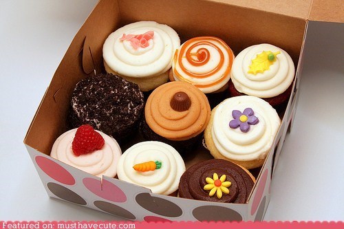 assortment,box,cupcakes,epicute,frosting,sweets