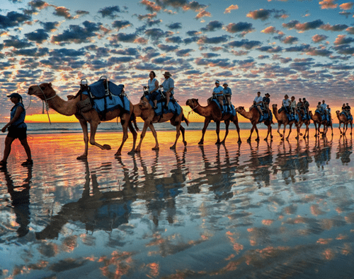 australia,beach,cable beach,camels,getaways,Hall of Fame,ocean,water