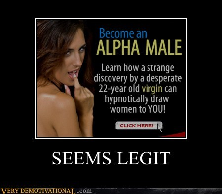 alpha male,hilarious,seems legit,Sexy Ladies