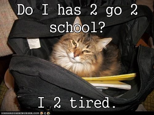 Do I has 2 go 2 school?  I 2 tired.