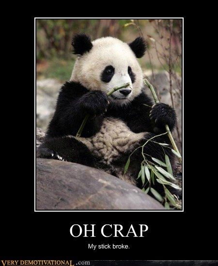 crap,hilarious,panda,stick,surprise