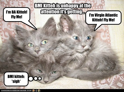 I'm BA Kitteh! Fly Me! I'm Virgin Atlantic Kitteh! Fly Me! BMI kitteh: *sigh* BMI Kitteh is unhappy at the attention it's getting...
