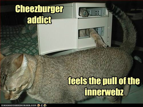 Cheezburger Image 5590102272