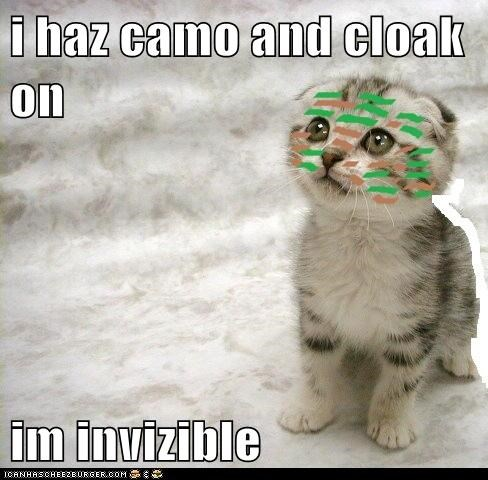 i haz camo and cloak on  im invizible