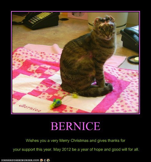 BERNICE Wishes you a very Merry Christmas and gives thanks for your support this year. May 2012 be a year of hope and good will for all.