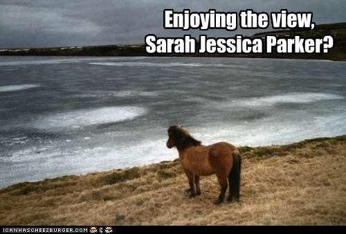 horse face,ocean,sarah jessica parker,vacations,weird kid