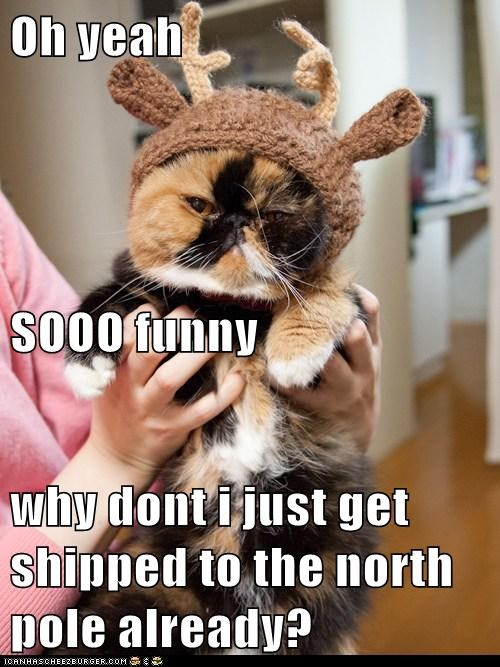Oh yeah SOOO funny why dont i just get shipped to the north pole already?