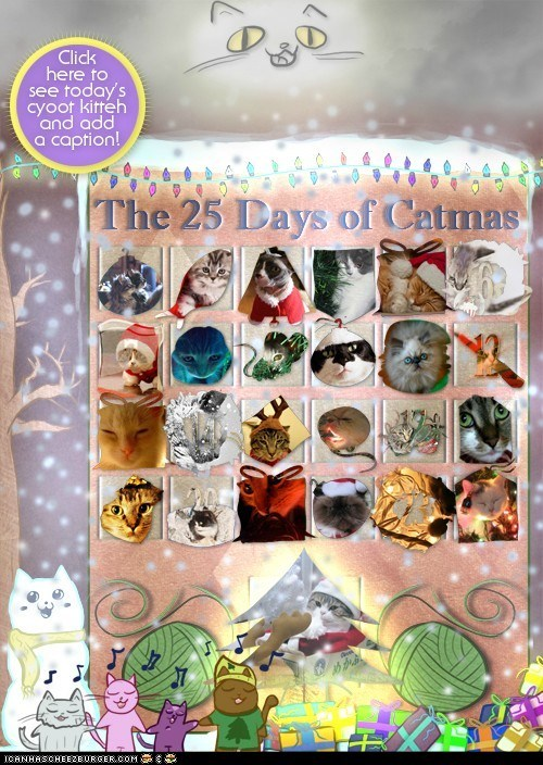 advent calendar,boxes,christmas,cyoot kitteh of teh day,holidays,reindeer,santa claus,santa hats,sleigh