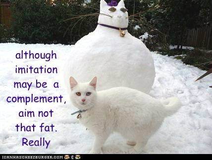 although imitation may be a complement, aim not that fat. Really