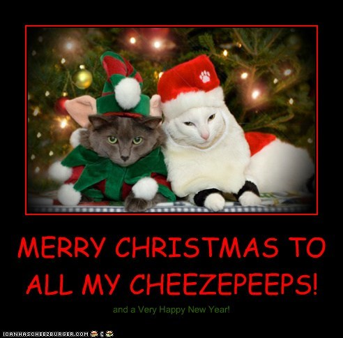 MERRY CHRISTMAS TO ALL MY CHEEZEPEEPS!