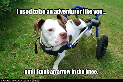 adventurer arrow in the knee arrow to the knee best of the week disabled Hall of Fame handicapped pit bull pitbull Skyrim wheelchair