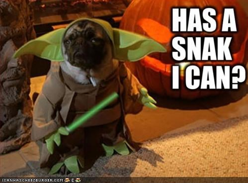 film,movies,pug,star wars,yoda