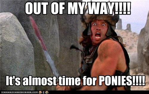 actor Arnold Schwarzenegger celeb Conan the Barbarian funny - 5593430528