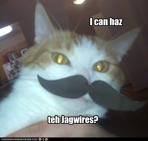 I can haz teh Jagwires?