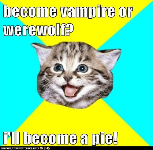 Cats dumb Happy Kitten pie random silly vampires werewolves wtf - 5594554880