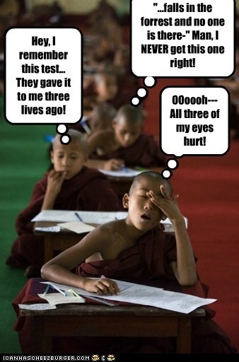 child monks monks pop quiz reincarnation uggh zen - 5594657536