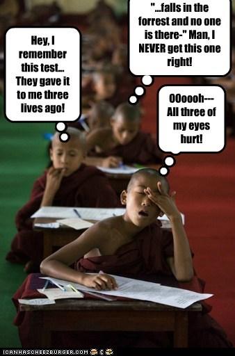 child monks monks pop quiz reincarnation uggh zen - 5594657536