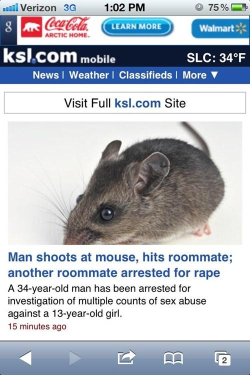 Probably bad News roommates stupid criminals wtf - 5595650816