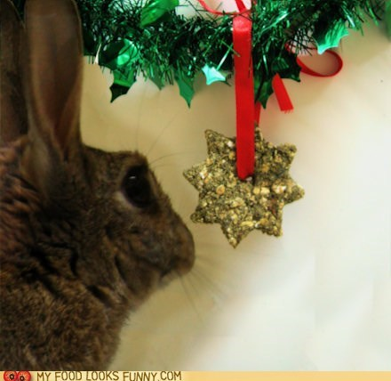 bunny,cookies,ornament,rabbit