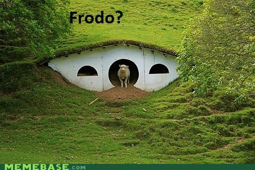 frodo Lord of the Rings Memes new zealand sheep - 5596026624
