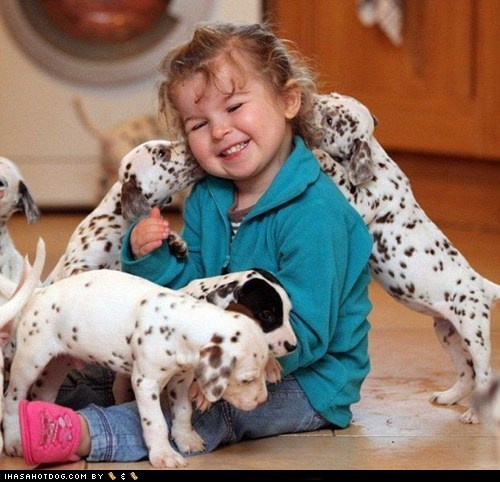 adorable adorbz awww child dalmatian friendship girl happy dog happy dogs happy kid human kid love omg so cute puppies - 5596170752