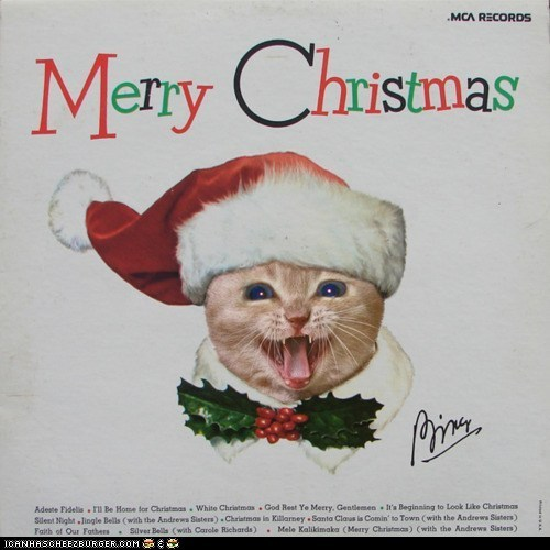 albums,best of the week,christmas,gallery,holidays,kitten covers,Music,photoshopped,records
