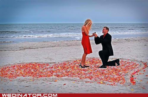 beach,funny wedding photos,rose petals