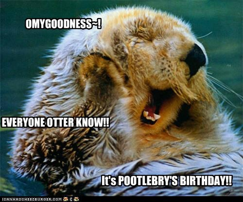 OMYGOODNESS~! EVERYONE OTTER KNOW!! It's POOTLEBRY'S BIRTHDAY!!