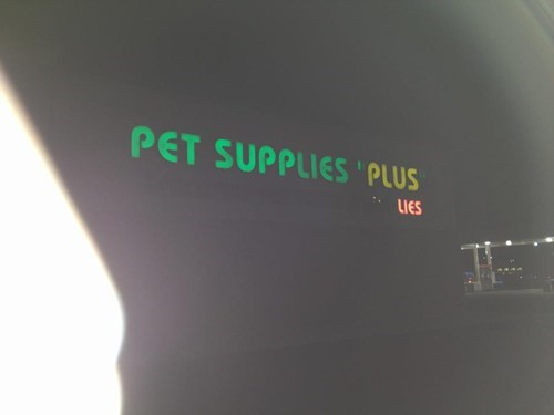 animals lies missing letter oops pets sings supplies - 5598086144