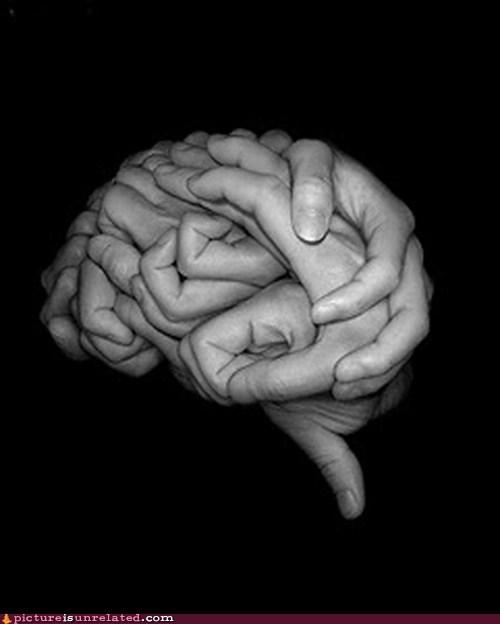 brain hand wtf - 5600069120