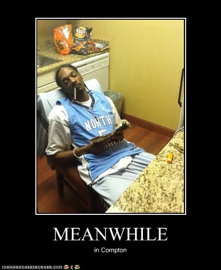 celeb,demotivational,funny,Music,snoop dogg