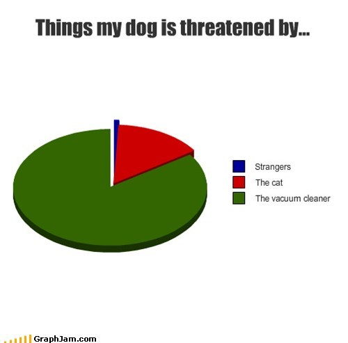 Cats dogs goggies Pie Chart vacuum - 5600724224