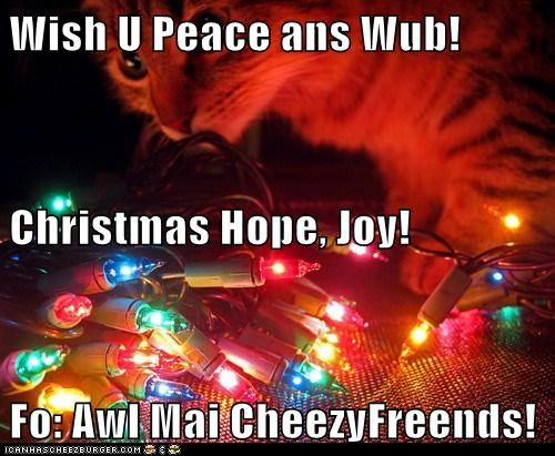Wish U Peace ans Wub! Christmas Hope, Joy! Fo: Awl Mai CheezyFreends!