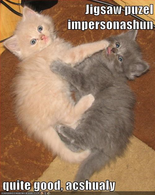 caption,captioned,cat,Cats,doing it right,good,impersonation,jigsaw,kitten,puzzle