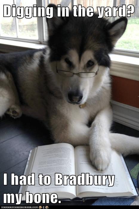 bones books bury burying Condescending Literary Pun Dog dogs literature puns ray bradbury reading - 5601262336